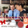 box 300 Nespresso compatibili, caffè Aroma Company